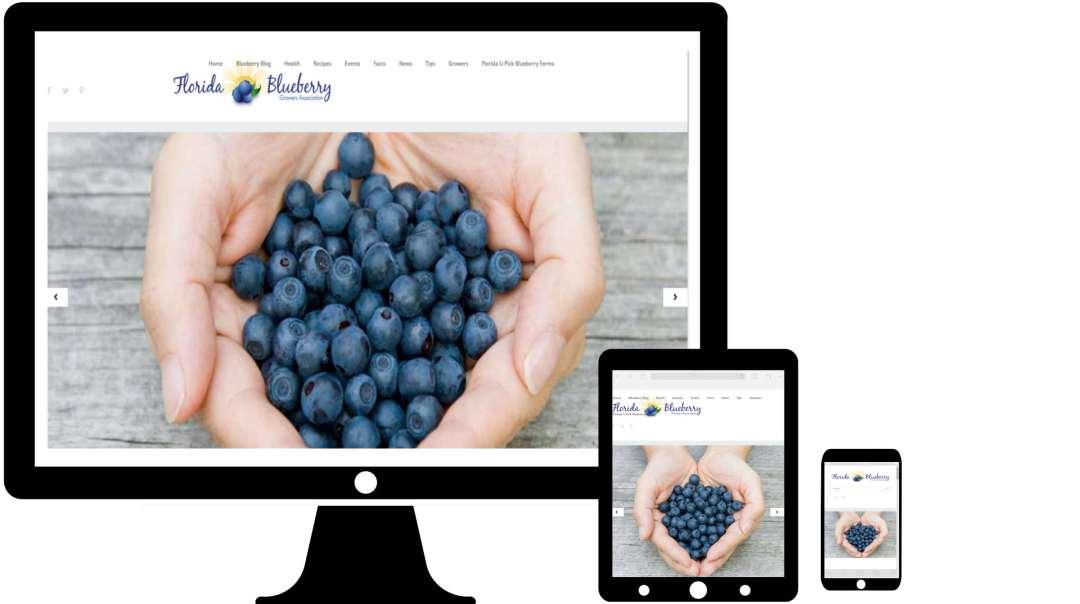 Blueberry2Final